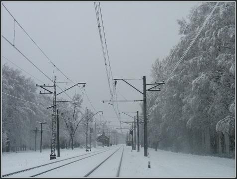 sniegputenis-martaa-0391