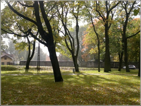 Arkadijas parks 355