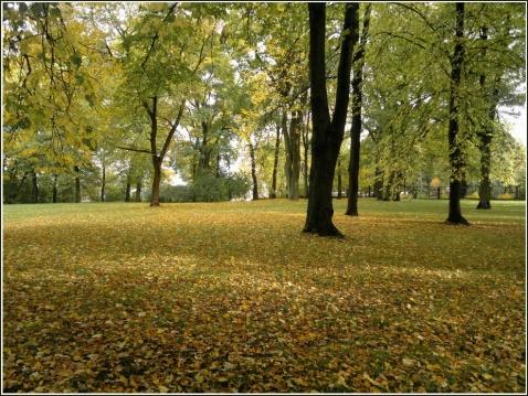 Arkadijas parks 359